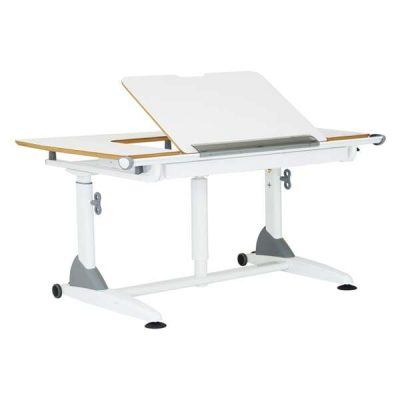 G7+S Kid2Youth Study Table
