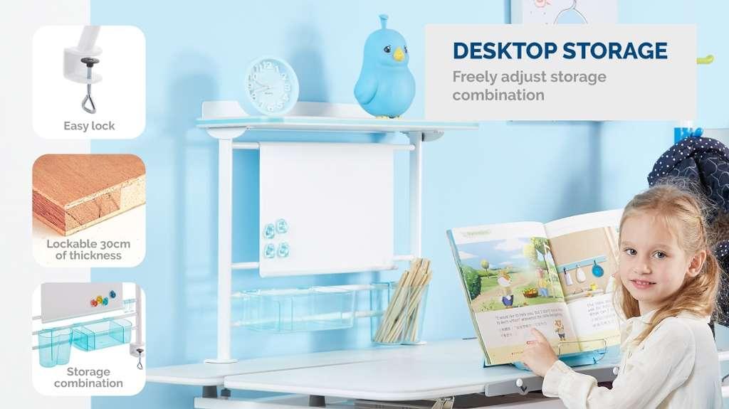 Kid2Youth Desktop Storage
