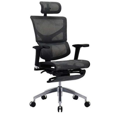 Sail Basic Ergonomic Chair with Legrest
