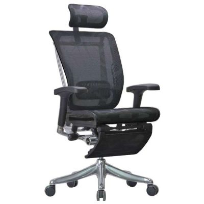 Spring Luxury Ergonomic Chair with Legrest