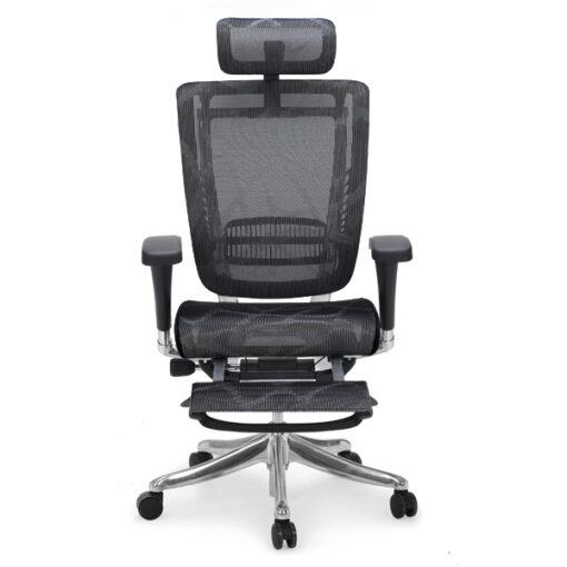 Spring Luxury Ergonomic Chair With Legrest