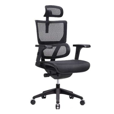 Vision Ergonomic Chair