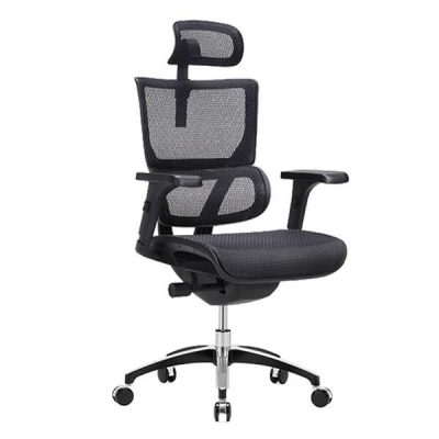 Vision Ergonomic Chair