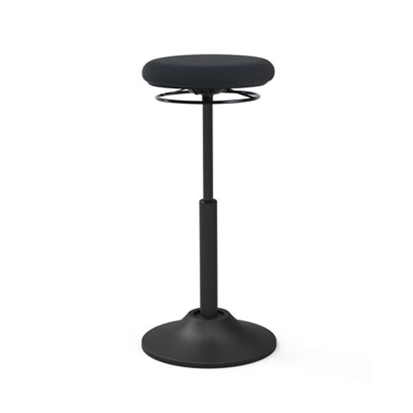 Lift Sit Stand Chair Takeaseat Sg