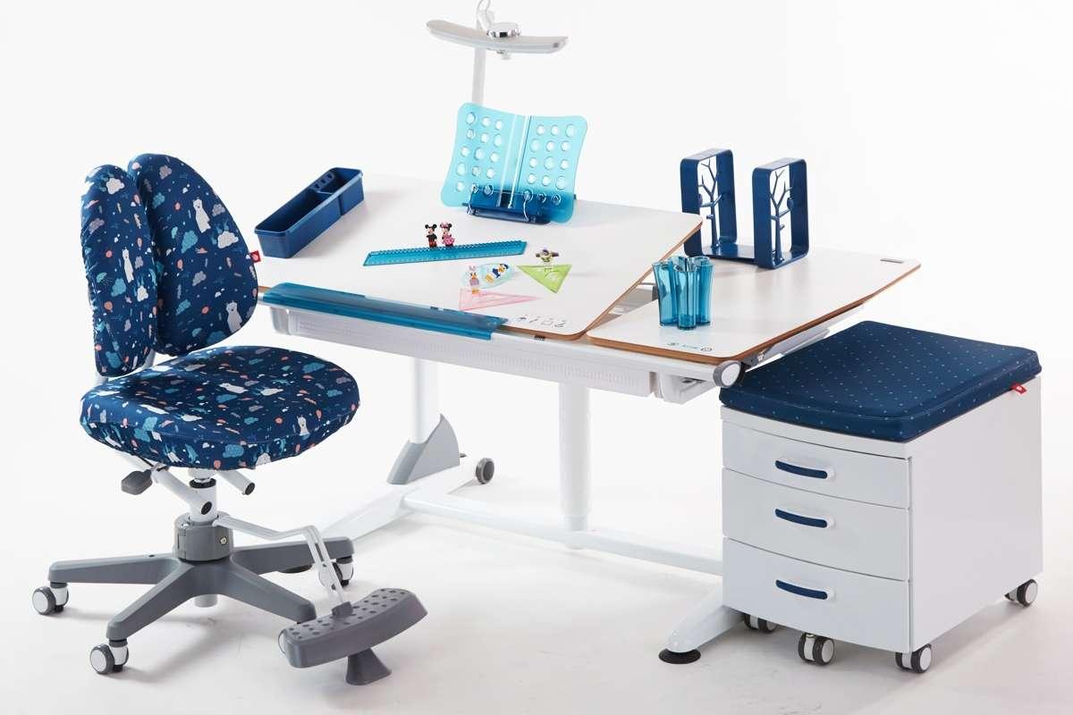 Ergonomic Office Furniture Singapore