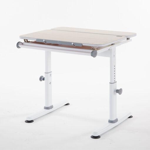 M2+XXS Study Table