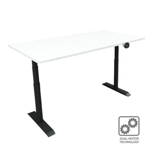 SEIV Electric Standing Desk