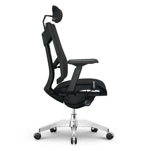 Argon Basic Ergonomic Chair