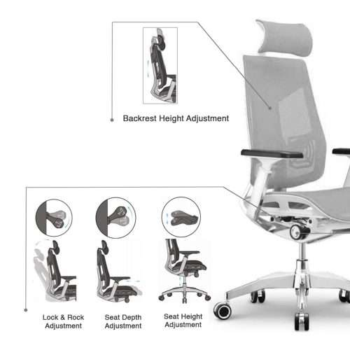 Argon Luxury Ergonomic Chair