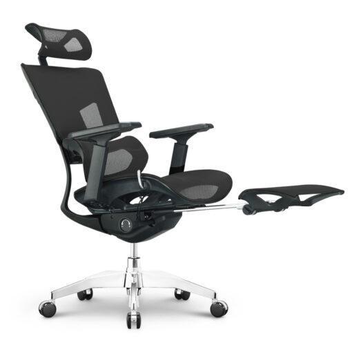 Sapphire Basic With Legrest Ergonomic Chair